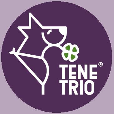TeneTrio Logo