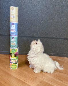 TeneTrio Hundefutter