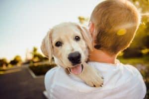 Junge trägt einen süßen Hund auf dem Arm